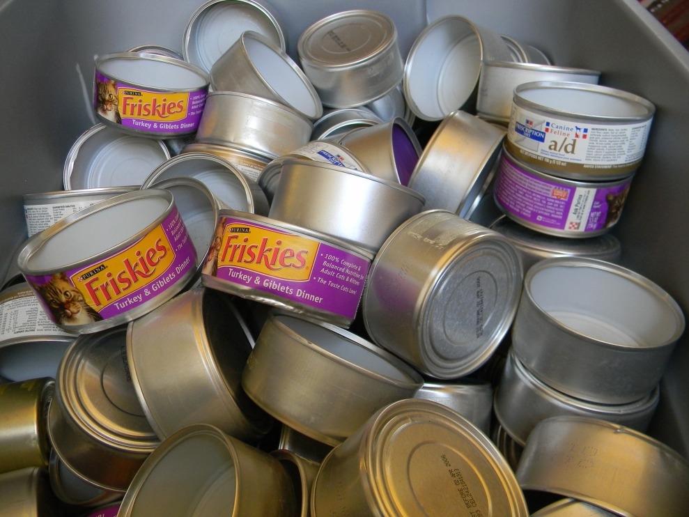 Cat food cans that are the bane of my partner Sara's existence--