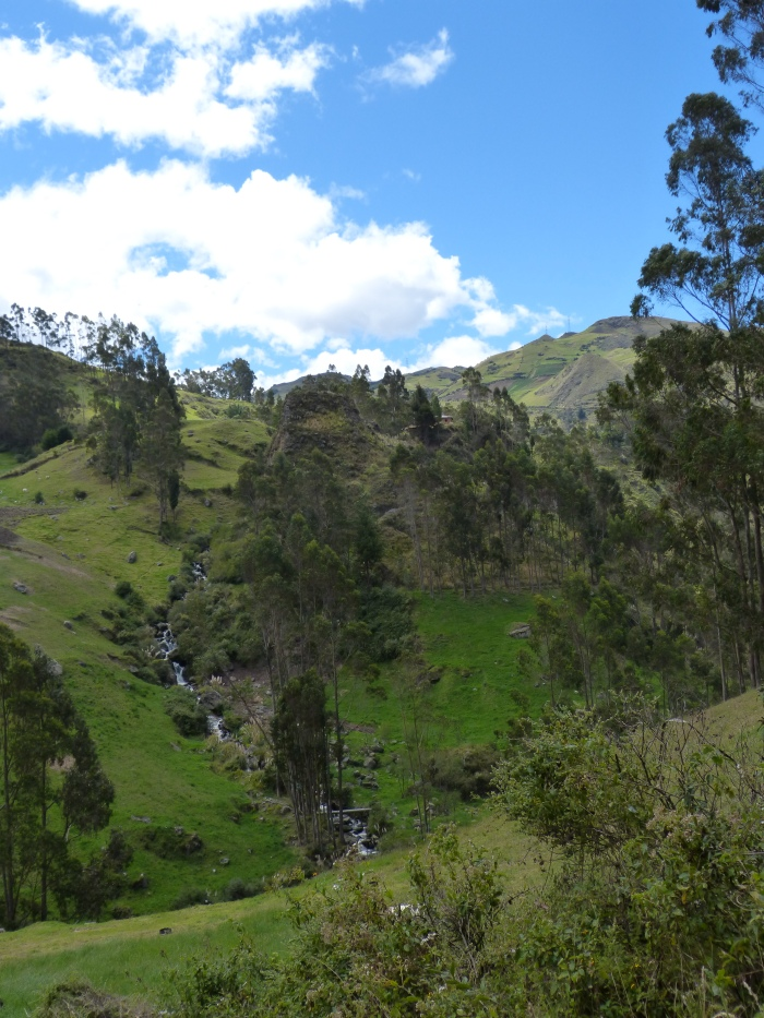 On our hike to see the Inca face, we enjoyed the sound of rushing water from the creek far below.