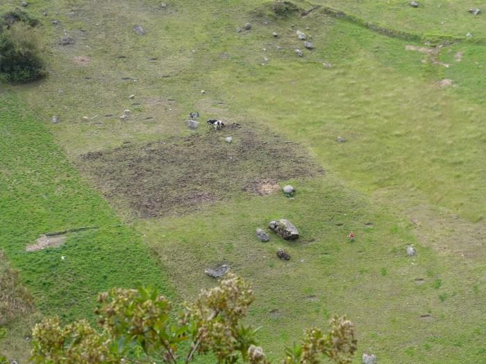 We saw local families farming the steep Andean hillsides.