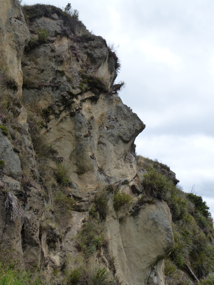 Inca face on a hillside near Ingapirca