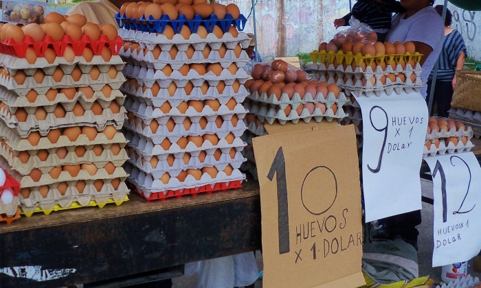 Eggs are 10-12 for a dollar, depending on the size.