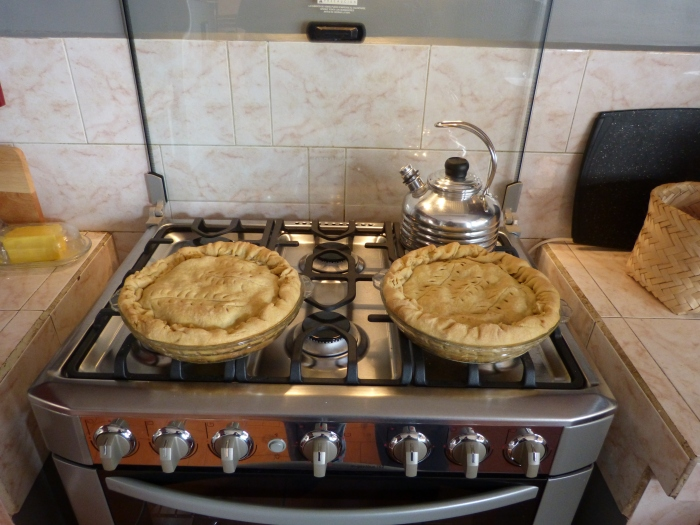 The oven allowed me to bake these great pies!