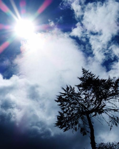 Sunlight near Girón--(Sara's image)