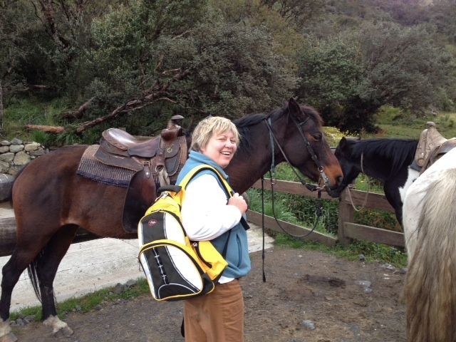 But Sara enjoyed the horses.  (David's image)